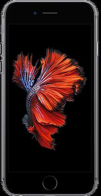Apple iPhone 6s (128GB Space Grey)