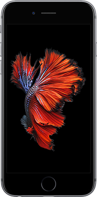 Apple iPhone 6s Plus (128GB Space Grey)