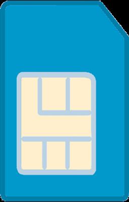 SIM Card Standard SIM