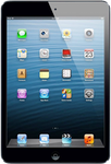 Apple iPad Mini 4 large