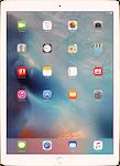 Apple iPad iPad large