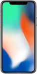 Apple iPhone X large